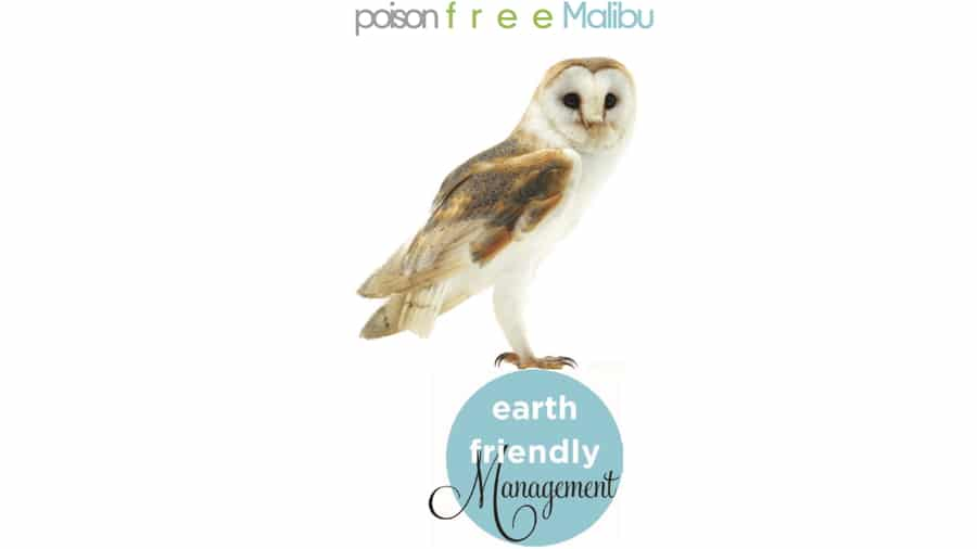 We recommend ~ Poison Free Malibu ~ Information Resource